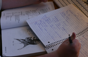 Image of a person writing in a notebook.