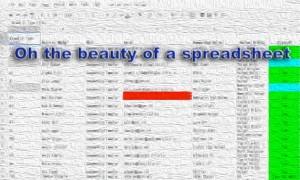 image of a spreadsheet done as a blur with a quote about the beauty of spreadsheets